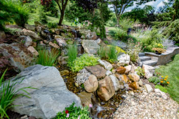 Large backyard waterfall installation with green landscaping