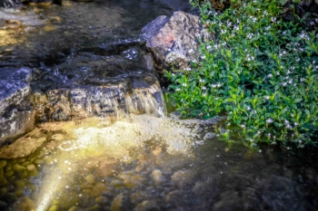 H2Oasis-Water-Features-Pennsylvania-Waterfall-and-Pond-Contractor-21