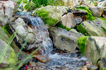 A backyard waterfall we installed in Huntingdon, PA