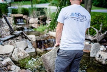 Pond & Waterfall Repairs and Renovations
