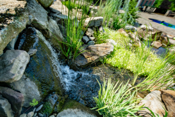 A shot of one of our recent waterfall installations near Altoona