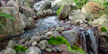 Our water feature installations are inspired by nature